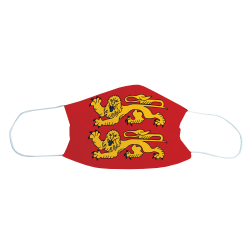 Masque de protection Drapeau Normandie, Lot de 2
