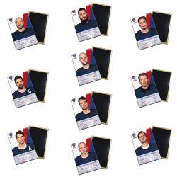 Set de 30 Magnets Equipe de France
