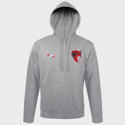Sweat Shirt Capuche GRIS Logo LNH et Logo Cavigal Nice Handball