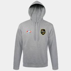 Sweat Shirt Capuche GRIS Logo LNH et Logo Chambery Savoie Mt Blanc Handball