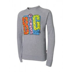 Sweat shirt BIG festival 6ème édition gris chiné